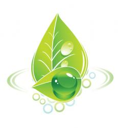 earth and nature vector image