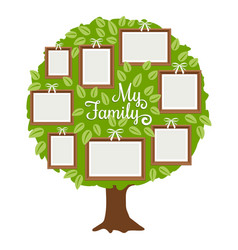 Green family tree with frames vector