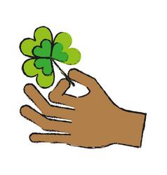 hand holding shamrock or clover leaf saint vector image