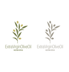 olive branches food isolated on white background vector image