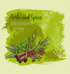 Poster of spices and herb seasonings vector