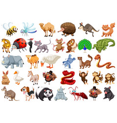 set of cartoon animal vector image