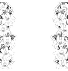 Vanda miss joaquim orchid outline border vector
