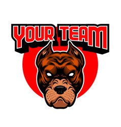 angry pitbull head mascot vector image