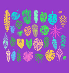 Decoration with tropical leaves vector