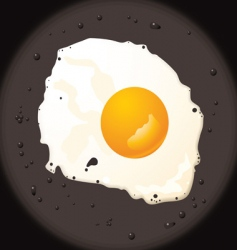 fried egg vector image