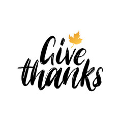 give thanks hand lettering maple leaf vector image