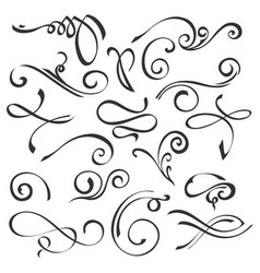 calligraphic swirls element set vector image vector image