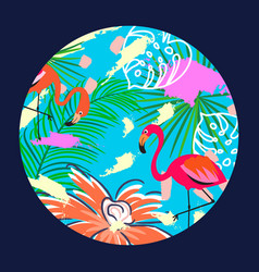 flamingo in a circle vector image