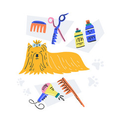 Handdrawn grooming concept vector
