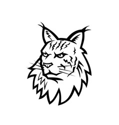Head of maine coon cat mascot black and white vector