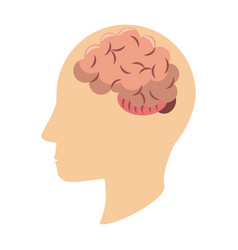 Human head silhouette with brain symbol vector