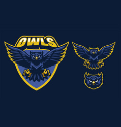 Sport style of owl mascot vector