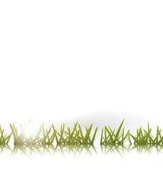 Green grass with reflection and sun isolated vector image vector image