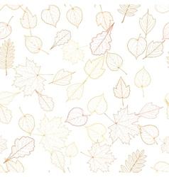 Autumn leaf skeletons template vector image