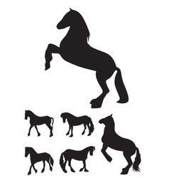 Black Horse Silhouette Set vector image