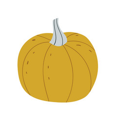 pumpkin food icon design vector image