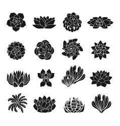 Succulent icons set simple style vector