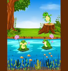frog swimming in the river vector image