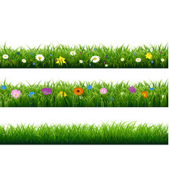 Grass border with flower vector