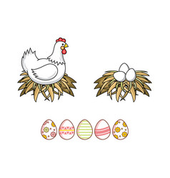 flat chicken eggs in nest isolated vector image