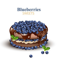Blueberries chocolate cake realistic vector