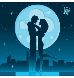 Romantic night on the roof vector image