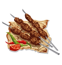 Tasty kebabs vector