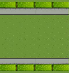 an aerial view garden vector image