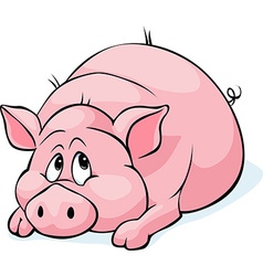 pig cartoon laying isolated on white background vector image