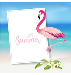 Realistic Sea Background Tropical Flamingo Bird vector