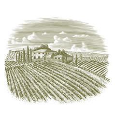 woodcut vintage italian vineyard vector image vector image