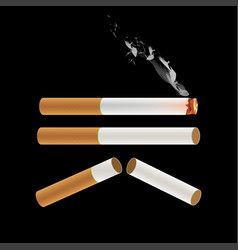 cigarette burning with smoke vector image