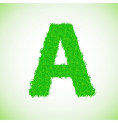 grass letter A vector image vector image