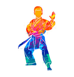 abstract young boy in kimono training karate from vector image