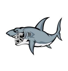 Big grey shark vector image