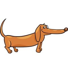 dachshund dog cartoon vector image