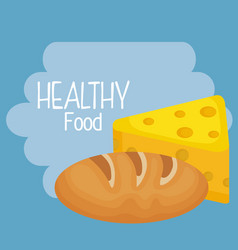 delicious bread and cheese healthy food vector image