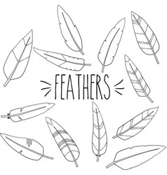 feathers outline hand sketch vector image