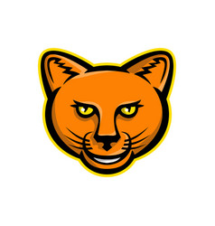 smiling puma head mascot vector image