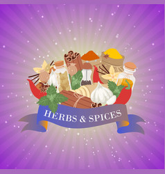 spices and herbs for cooking and baking winter vector image