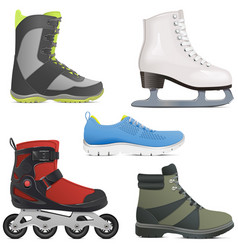 sport shoes and skates vector image