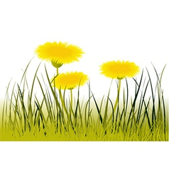 Spring flowers v vector image