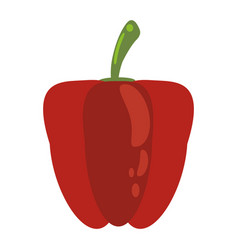 red pepper food healthy image vector image vector image