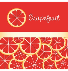 background of grapefruit slices accommodated on ea vector image