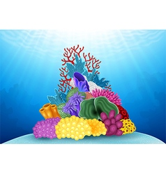 Beautiful coral underwater world vector