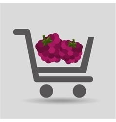 Carry buying raspberry fruit icon graphic vector