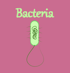 Human icon in flat style bacteria vector