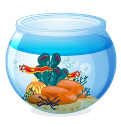 a water bowl and animals vector image vector image