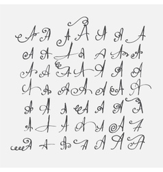 Print set of calligraphic letters A hand vector image vector image